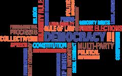 Albuquerque Votes on Pro-Democracy Measures