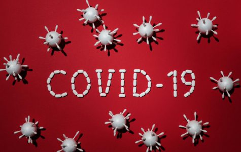 COVID 19 Update: What's New in New Mexico?