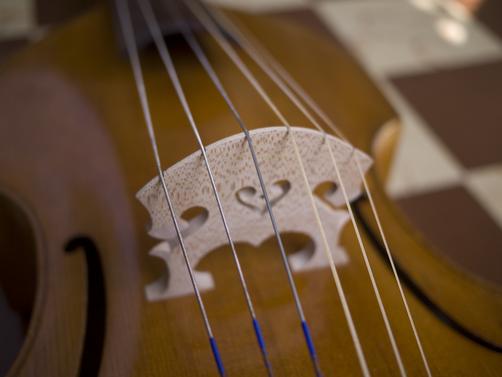 Uncommon instruments bring uncommon sounds