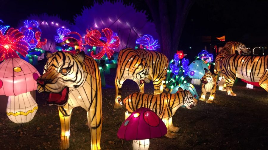 Culture and Artistry at the Chinese Lantern Festival
