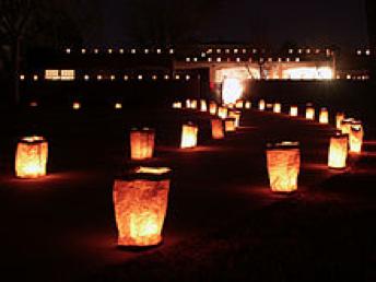 Albuquerque Lights Up for the Holidays