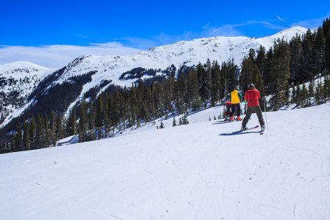 The Ski Scene