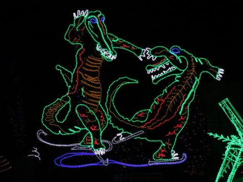 Alligators dancing at the River of Lights.