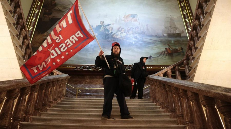 Protestor on the steps of the Capitol. Photo by Win McNamee/Getty Images