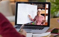 Online School: The Teachers' Perspective