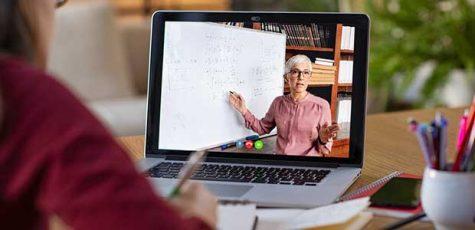 Online School: The Teachers