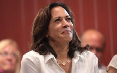Vice-Prsident Kamala Harris made a major foreign policy trip to shore up US relations in Asia.